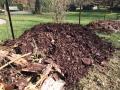 Fabrication d'une butte de culture. Première couche de bois déjà en décomposition, des branches et écorces puis le tout recouvert de 20 à 30 cm de terreau