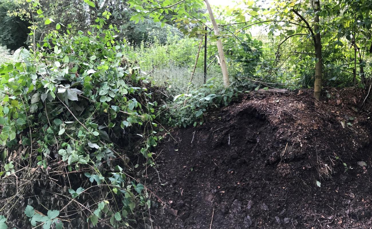 Compost de cette annee et de un an