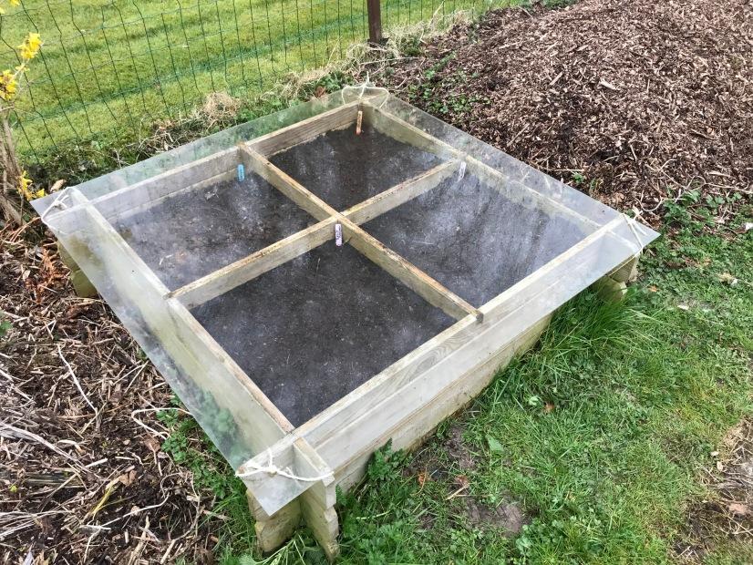 15 semis sous plexiglass
