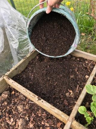 5 Ajoute terreau a semis