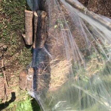 J'ai rajouté des bûches pour maintenir le plastique au sol